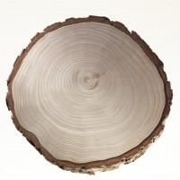 hout-stemming-sauna-KLAFS